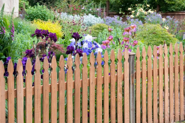 Reasons Your Property Should Have A Fence